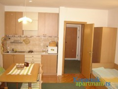 Apartmani u Vila Nikola - apartmani na Kopaoniku